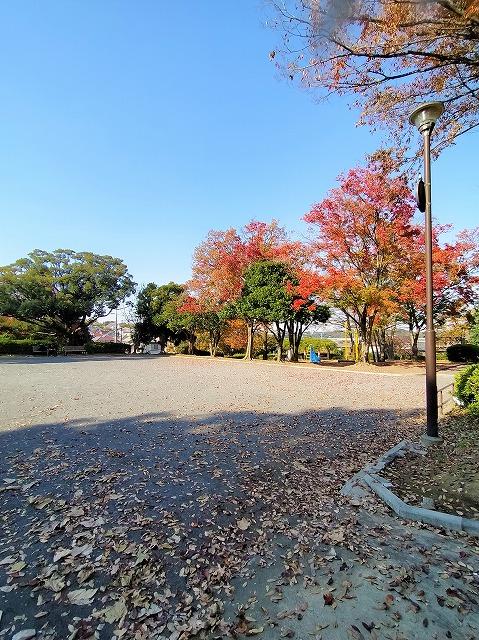 柿の木台第一公園(周辺)